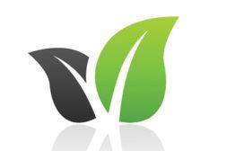 Green leaves logo