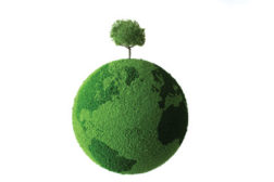 World covered with green grass