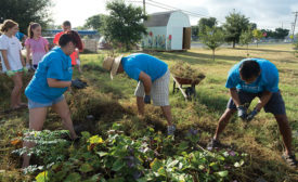 Time Warner Cable's Austin employees volunteer with community partner EcoRise