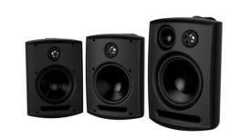 Adept speakers