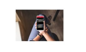 Mobile Wireless Security for Small Businesses