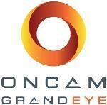 OnCam Grandeye